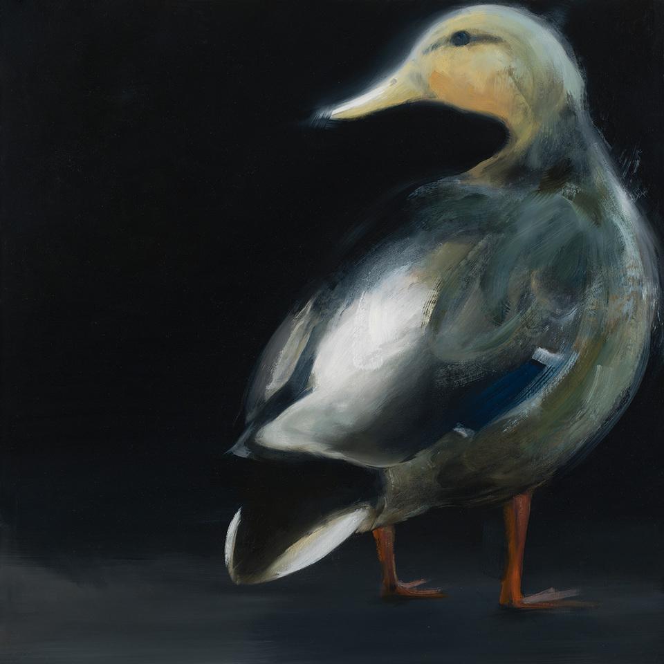 Duck 03918