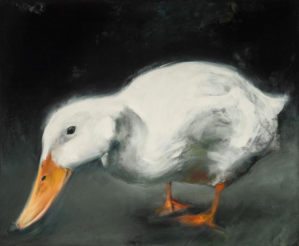 Duck 03917
